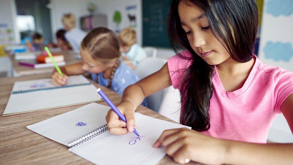 Gradelink Stories   EnrollMe, Part 2