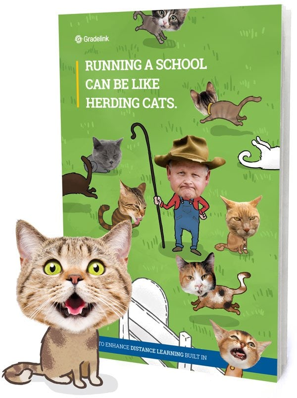 Herding Cats Brochure Cover with Cat